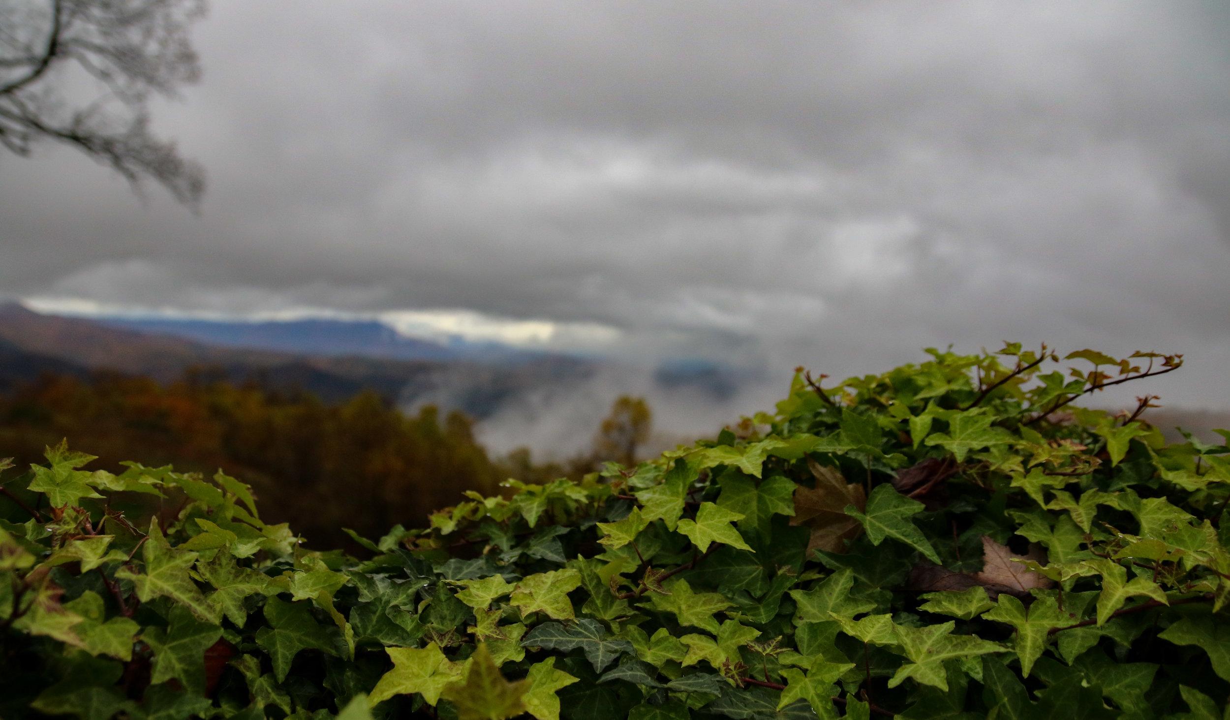 Roaring Gap houes view autumn 2 (1 of 1).jpg