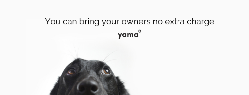 Yama Headers (2).png