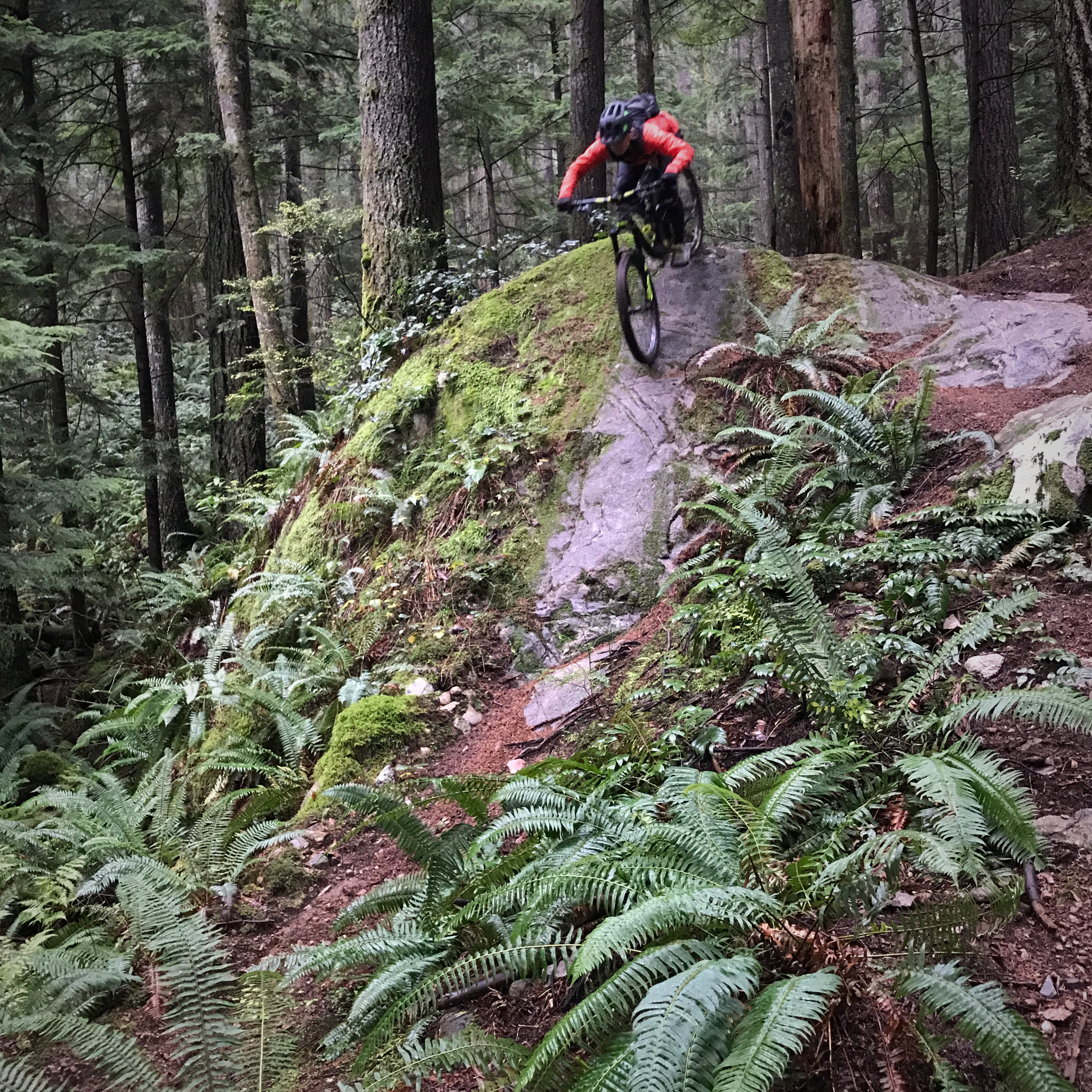 - Never ride bikes with a trail builder unless you mind stopping, as they always seem to find something to work on mid-ride.