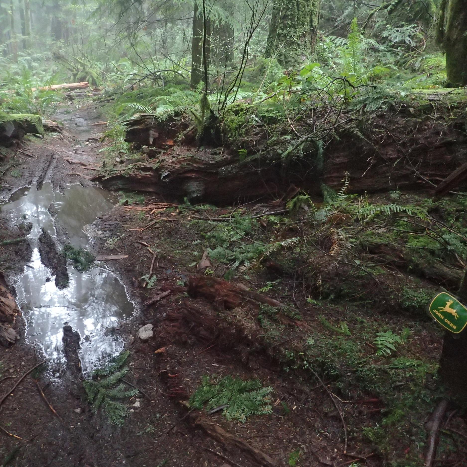 John Deer - No Drainage