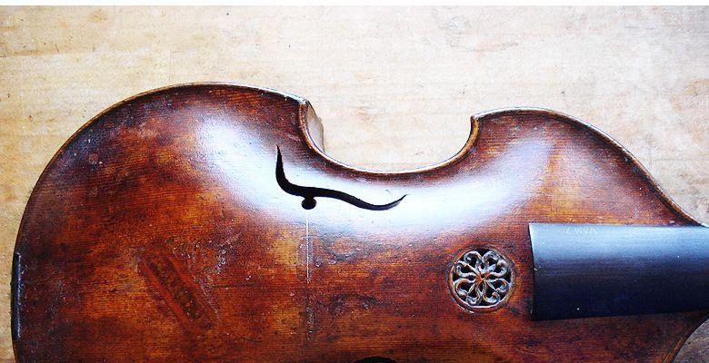 viola-damore-01.jpg