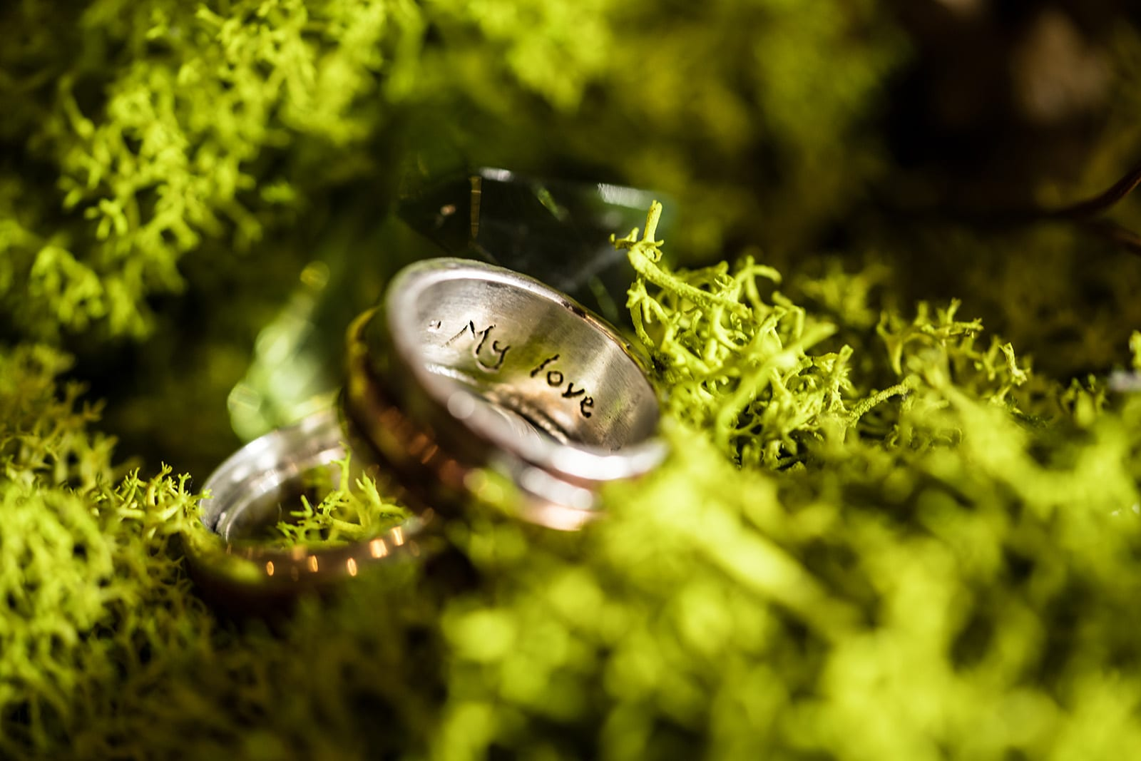My-love-gay-wedding-grooms-moss-copper-Hawaii-Wedding-Photographer-Ring-Details-macro.jpg