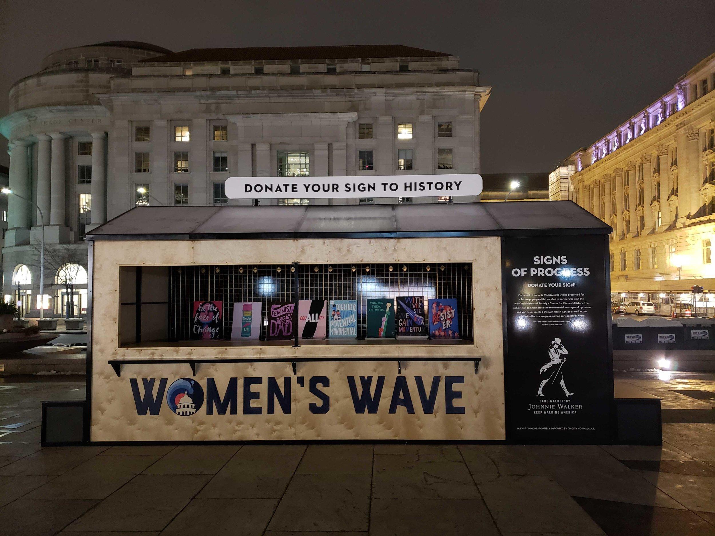 JANE WALKER: WOMEN'S MARCH D.C.