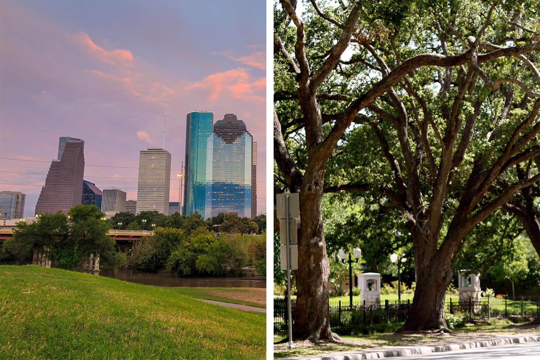 Dentist Houston League City Tx New Teeth Dental Solutions