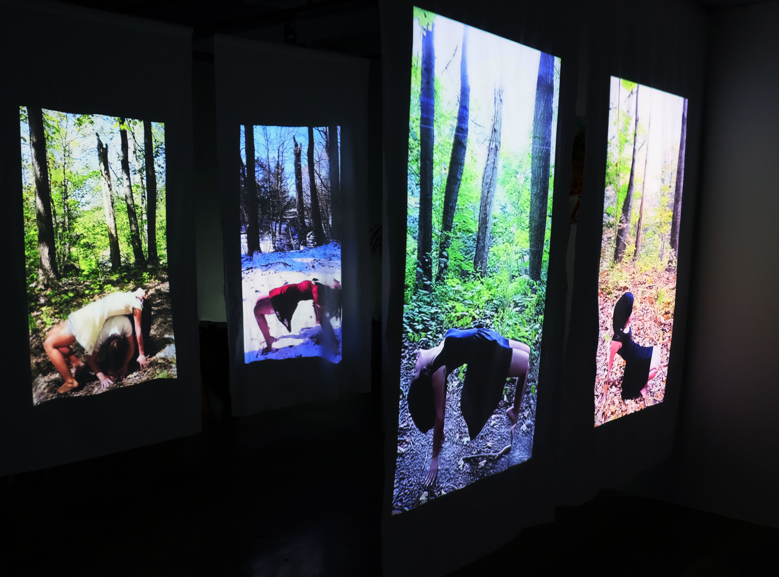 """Bridge/Carried (installation view),  projection on fabric, 2012-2013; 2016, 30 x 60"""" each"""