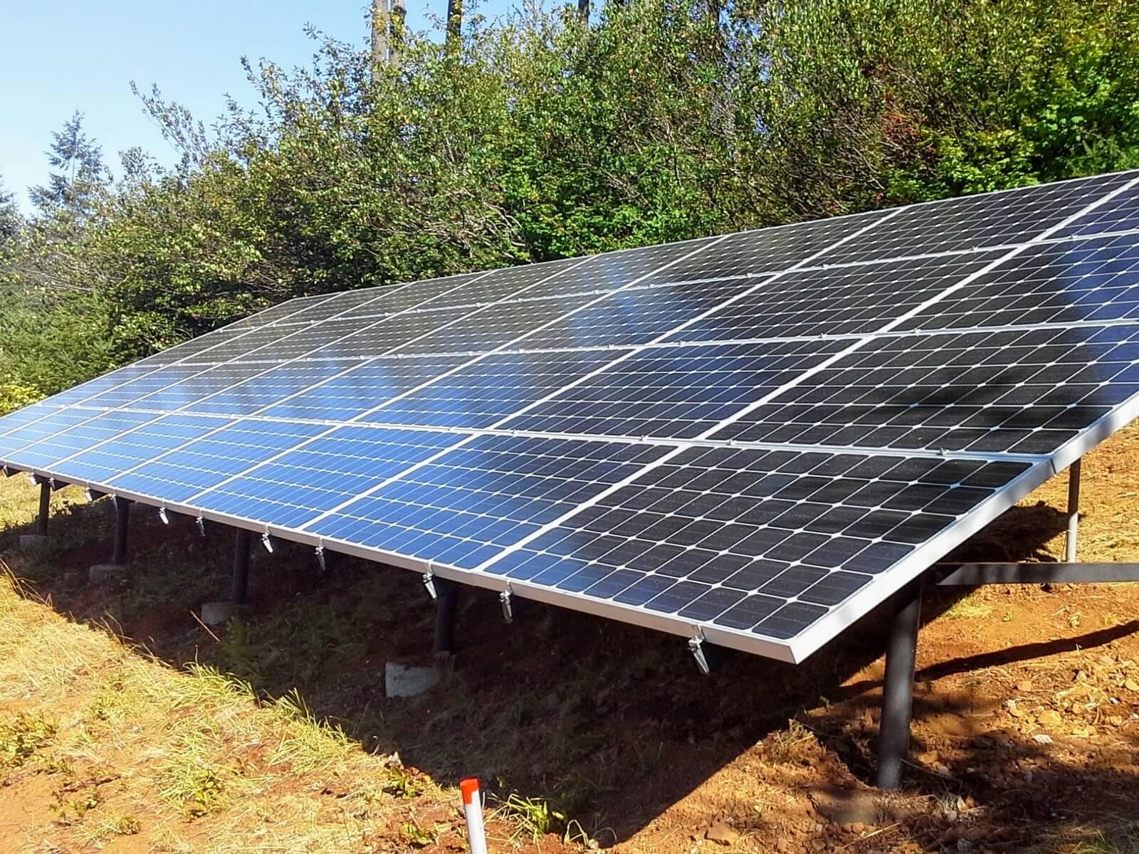 solar ground mount tree farm.jpeg