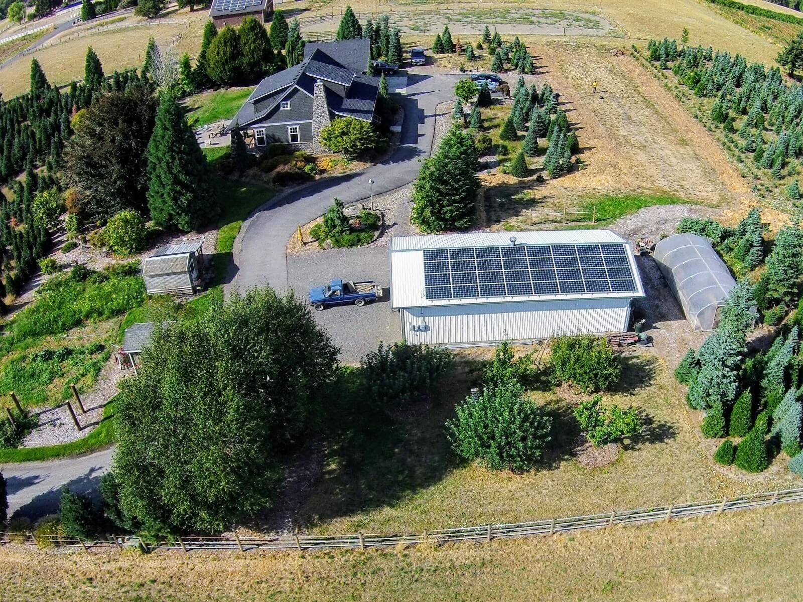 solar electric tree farm.jpeg