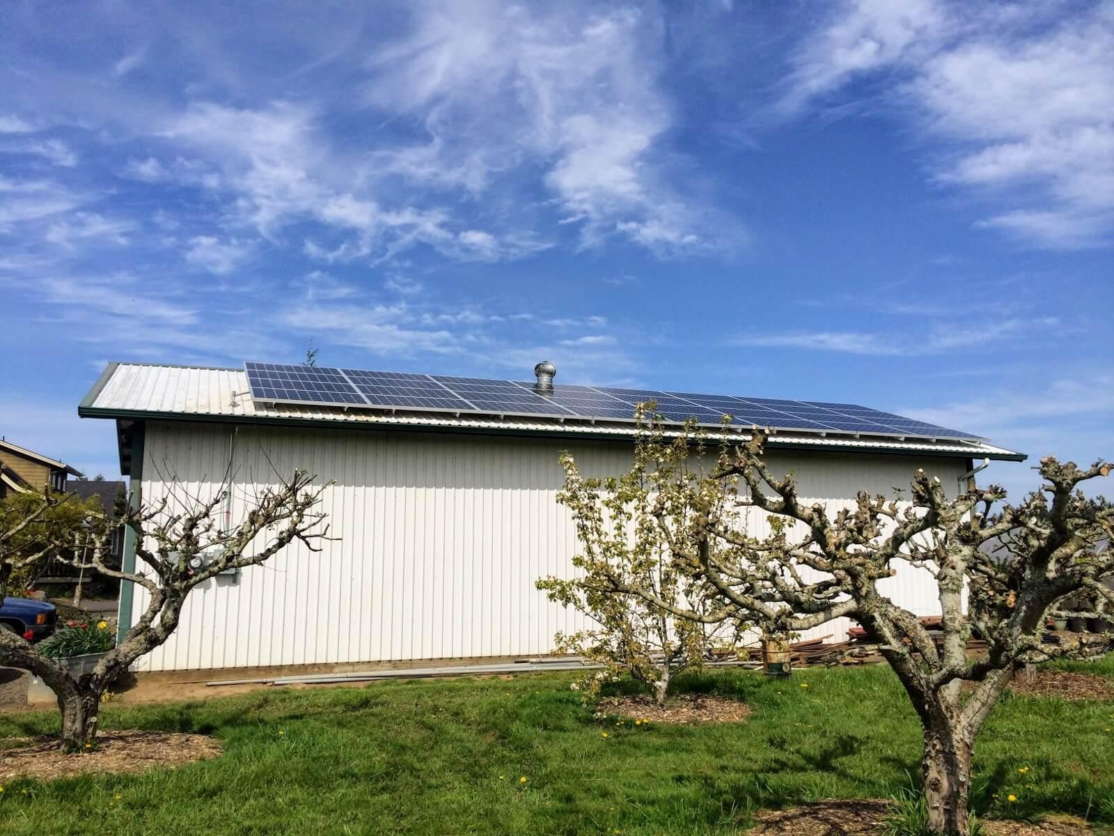 commercial solar electric nut farm washington.jpeg