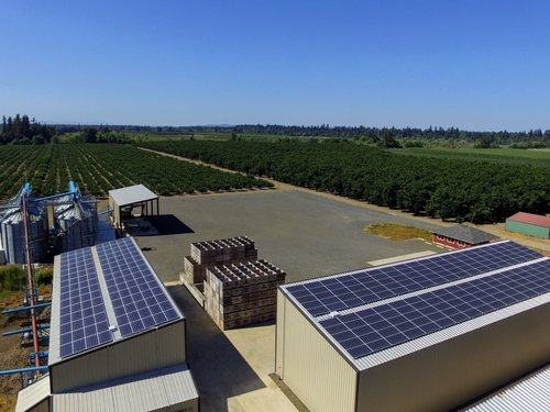 chapin+dehydrator+solar+panels.jpeg