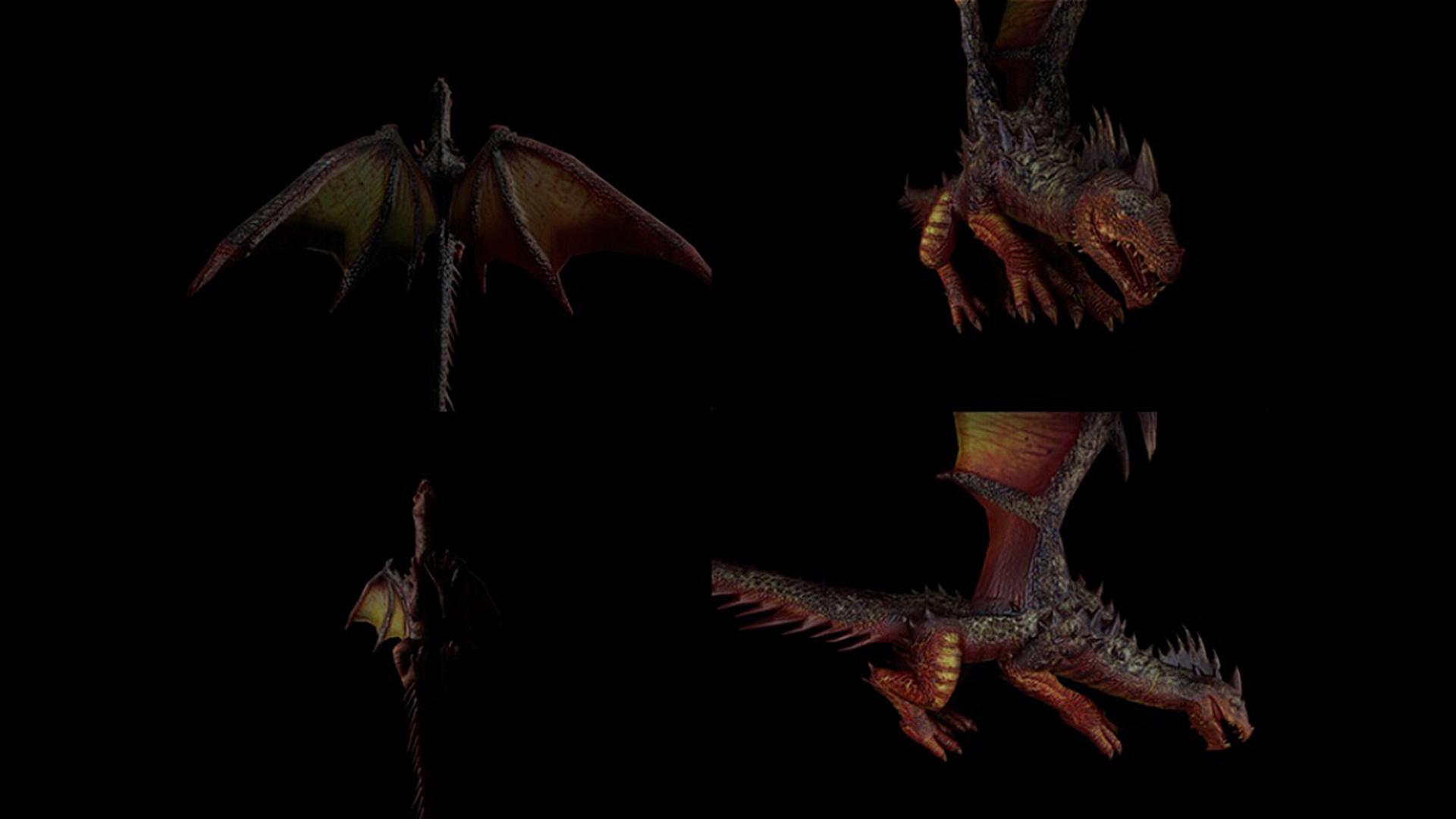 dragonskin02.jpg