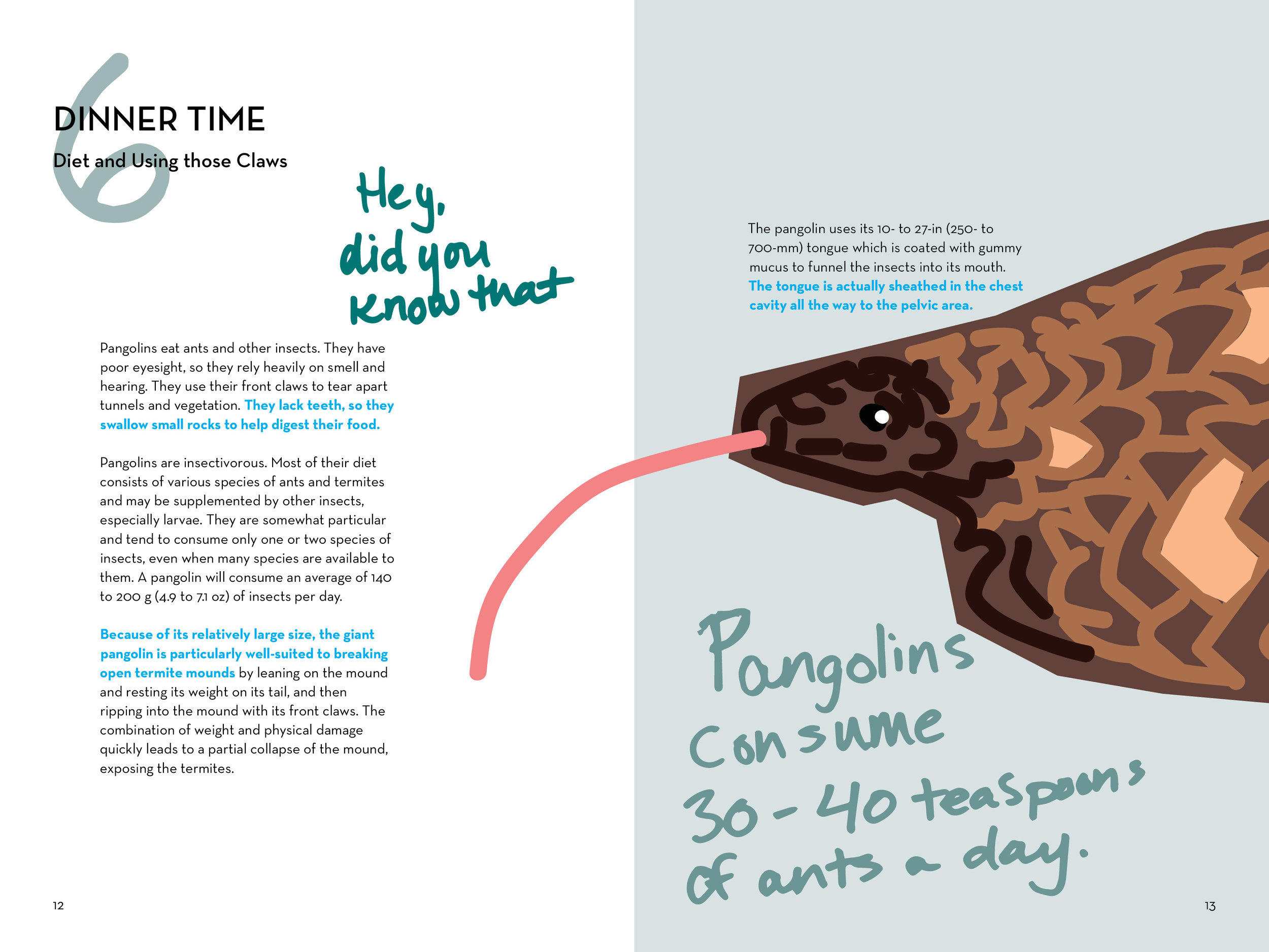 pangolin booklet_final_FINAL_PAGES_v27.jpg
