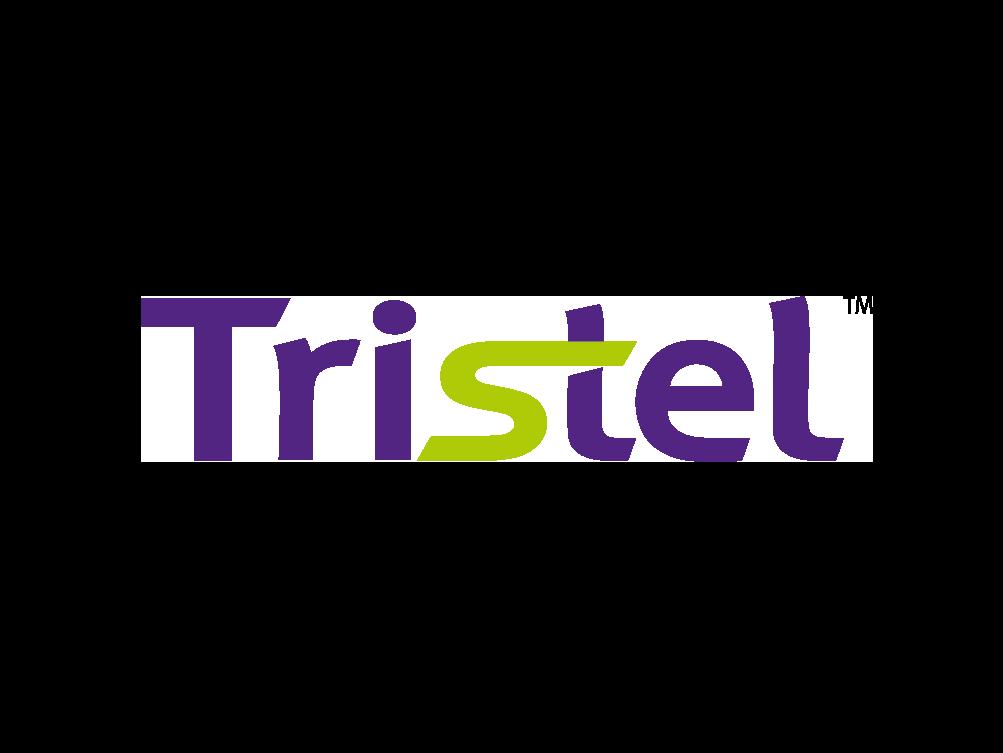 4.1 Tristel Corporate Logo_for website.png