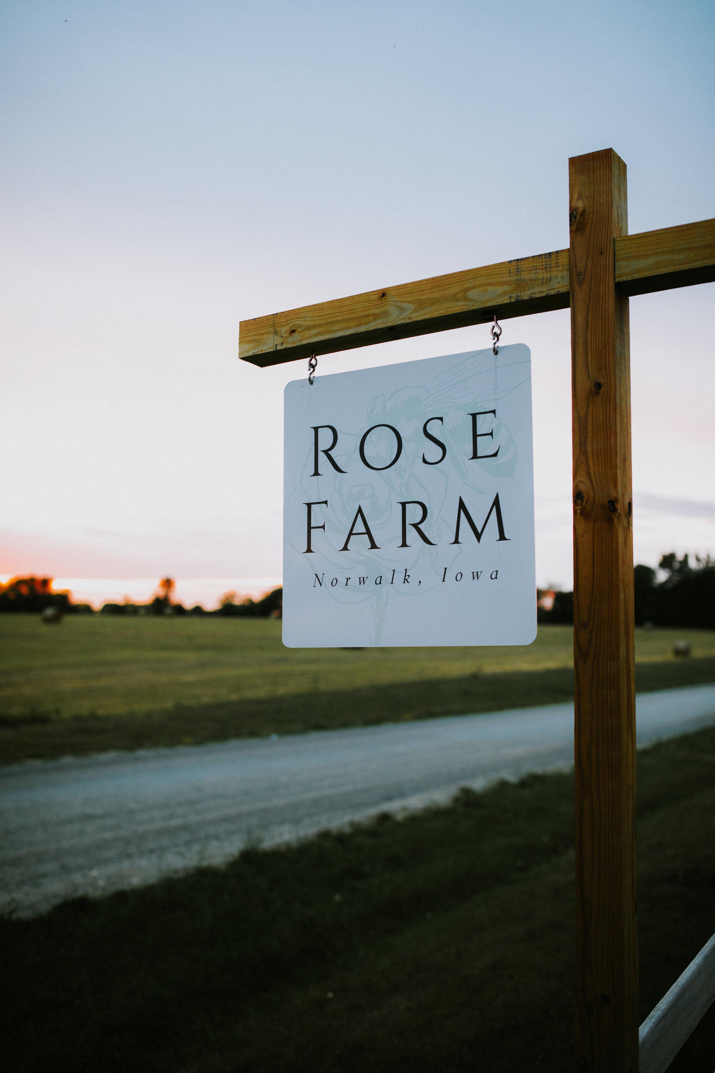 RoseFarm-7.jpg