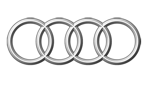 Audi 300 greyscale white text.png