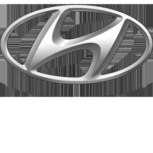 Hyundai 300 greyscale white text.png