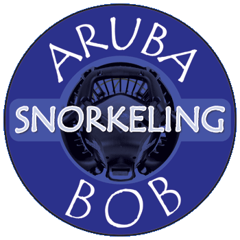 Aruba Bob Snorkeling.png