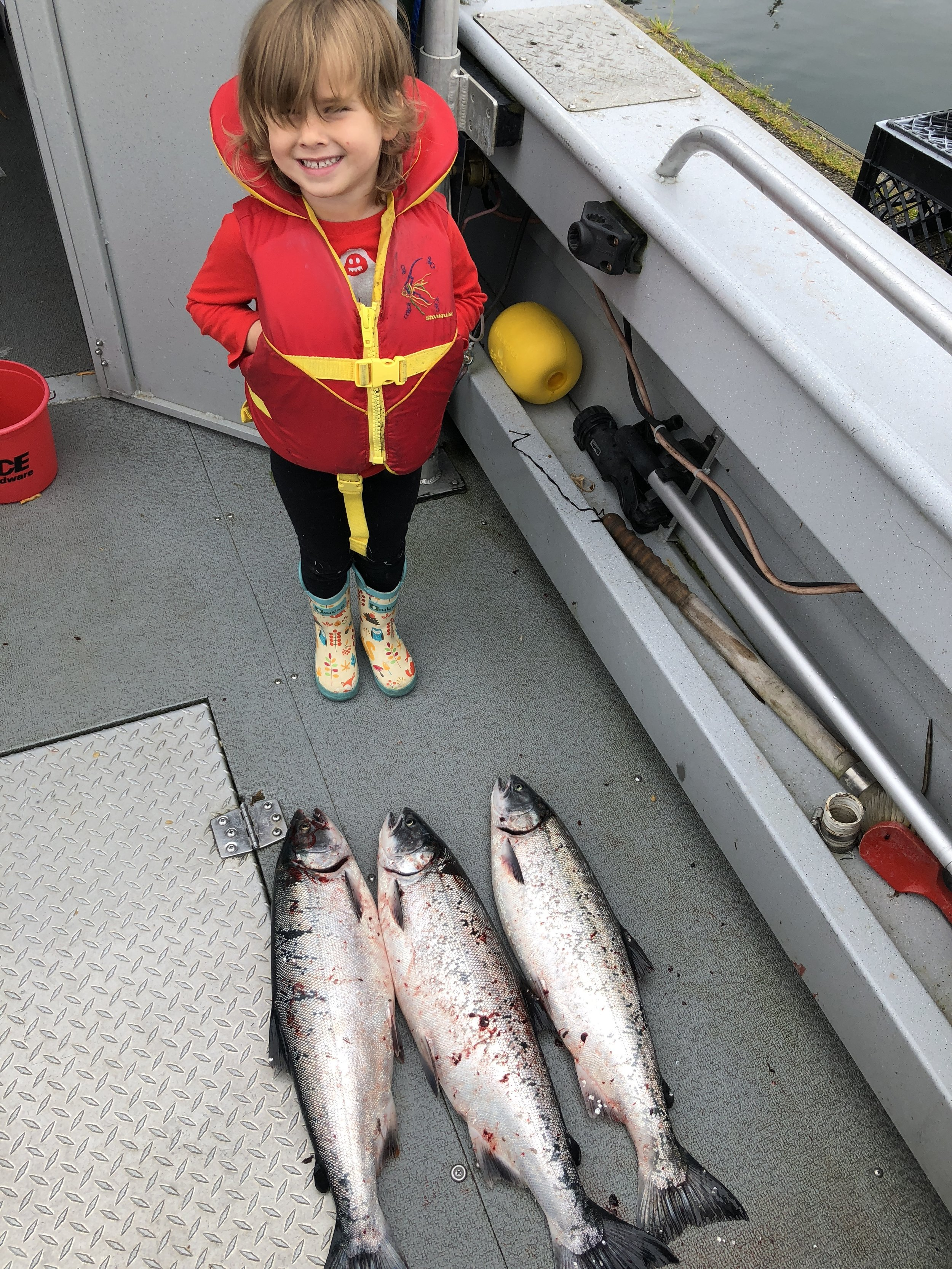 Silver Salmon Charter - The waters outside of cordova in prince william sound have some of the most outstanding silver salmon fishing in alaska. although the bulk of silvers caught out of cordova are from the river systems fishstix charters is proud to offer anglers the opportunity to go after these amazing fish in the saltwater. an experience you will not forgert.our silver salmon charters are 3/4 day trips. typically this is provides more than enough action to make you plenty tired. half day trips may be available depending on the location of the fish.several methods are used to target silvers. typically we will troll until we find a good school of fish then switch to mooching rigs for a more hands on experience. If the fish are on the surface we can cast spinners and troll flies on the surface.