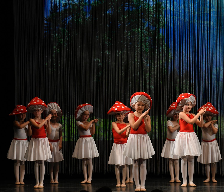 ballettschule-mimi-schmaeh-schneewittchen-180722-195212.jpg