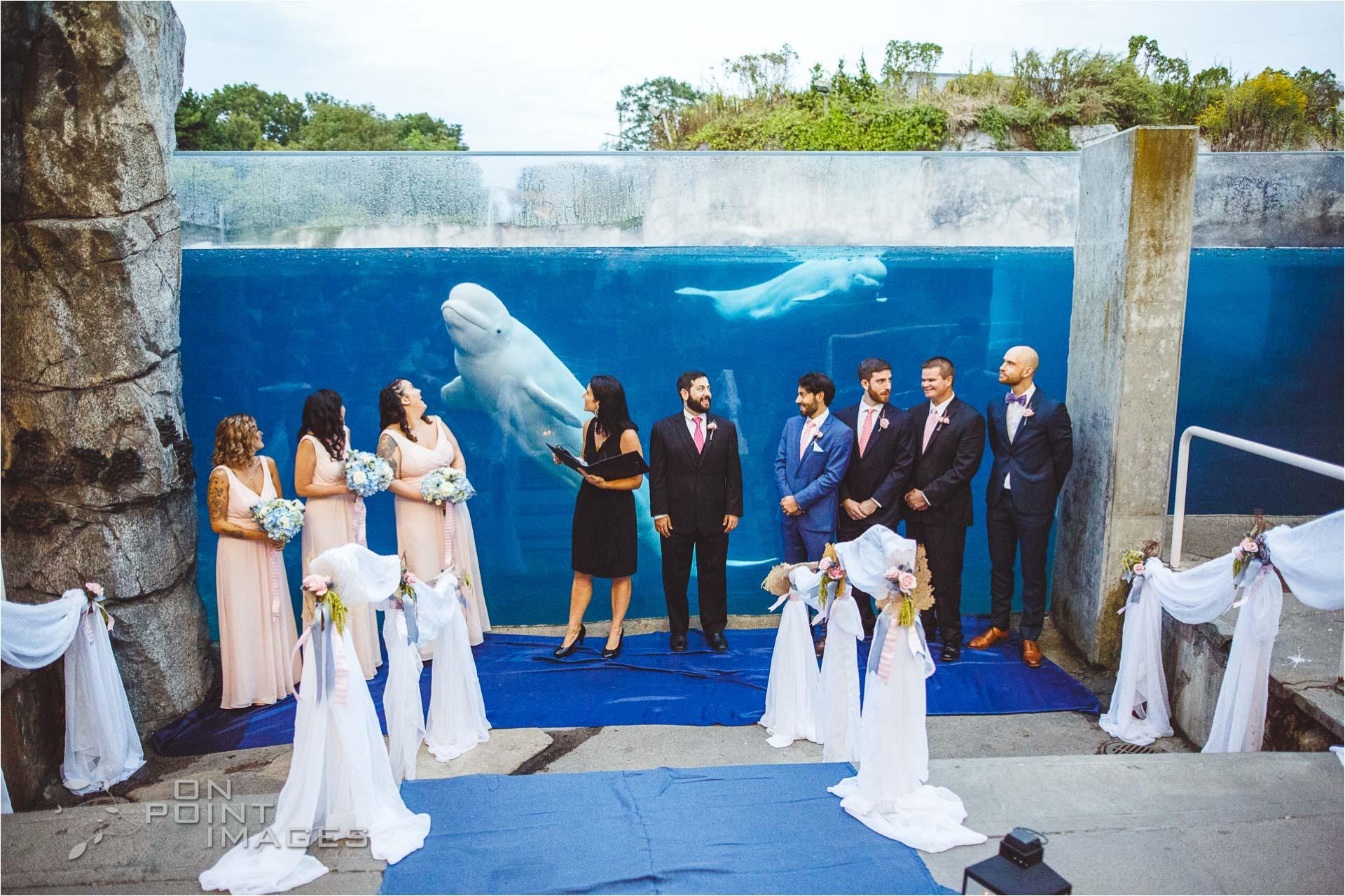 mystic-aquarium-wedding-photographs-21.jpg
