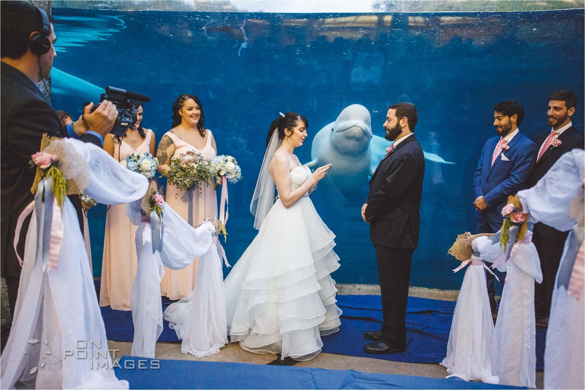 mystic-aquarium-wedding-photographs-24.jpg