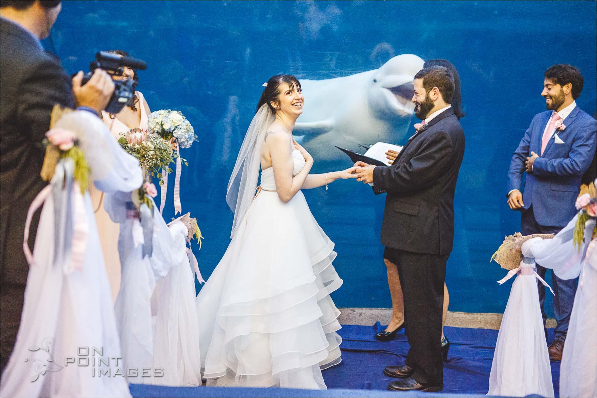 mystic-aquarium-wedding-photographs-26.jpg