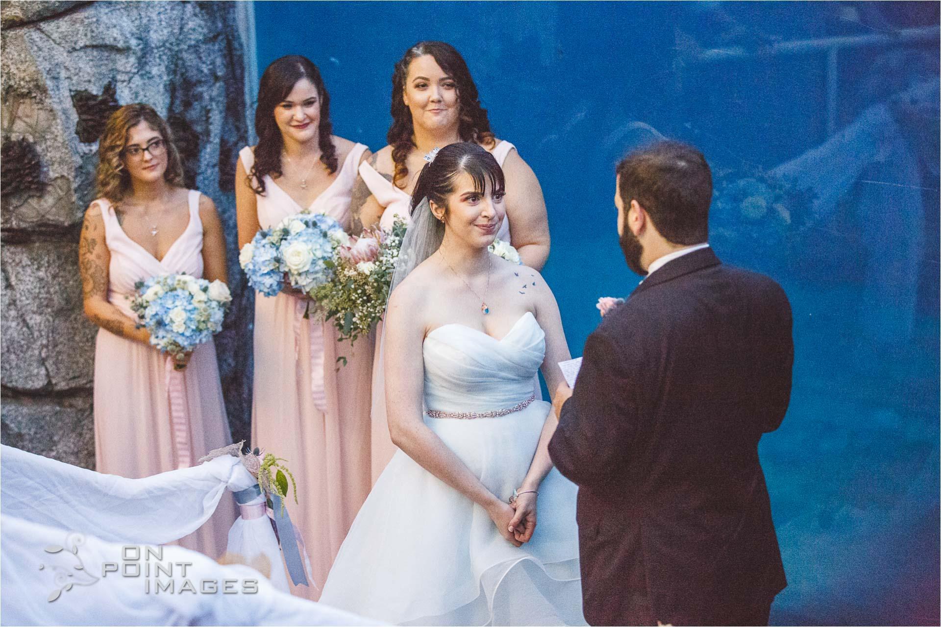 mystic-aquarium-wedding-photographs-25.jpg