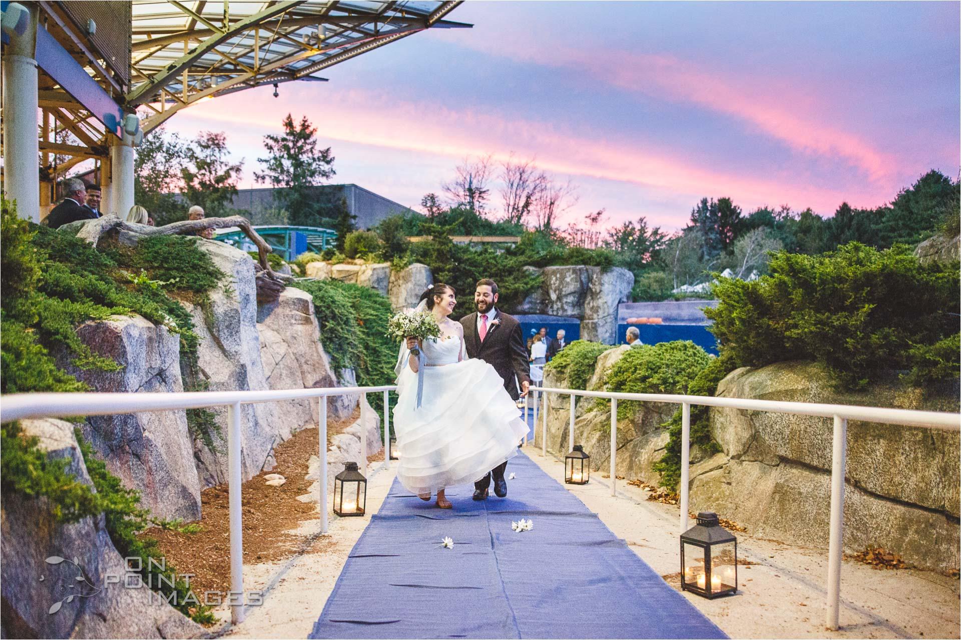 mystic-aquarium-wedding-photographs-28.jpg