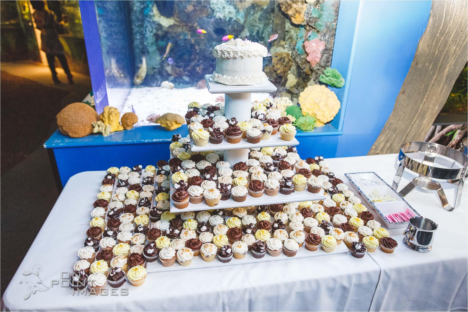 mystic-aquarium-wedding-photographs-30.jpg
