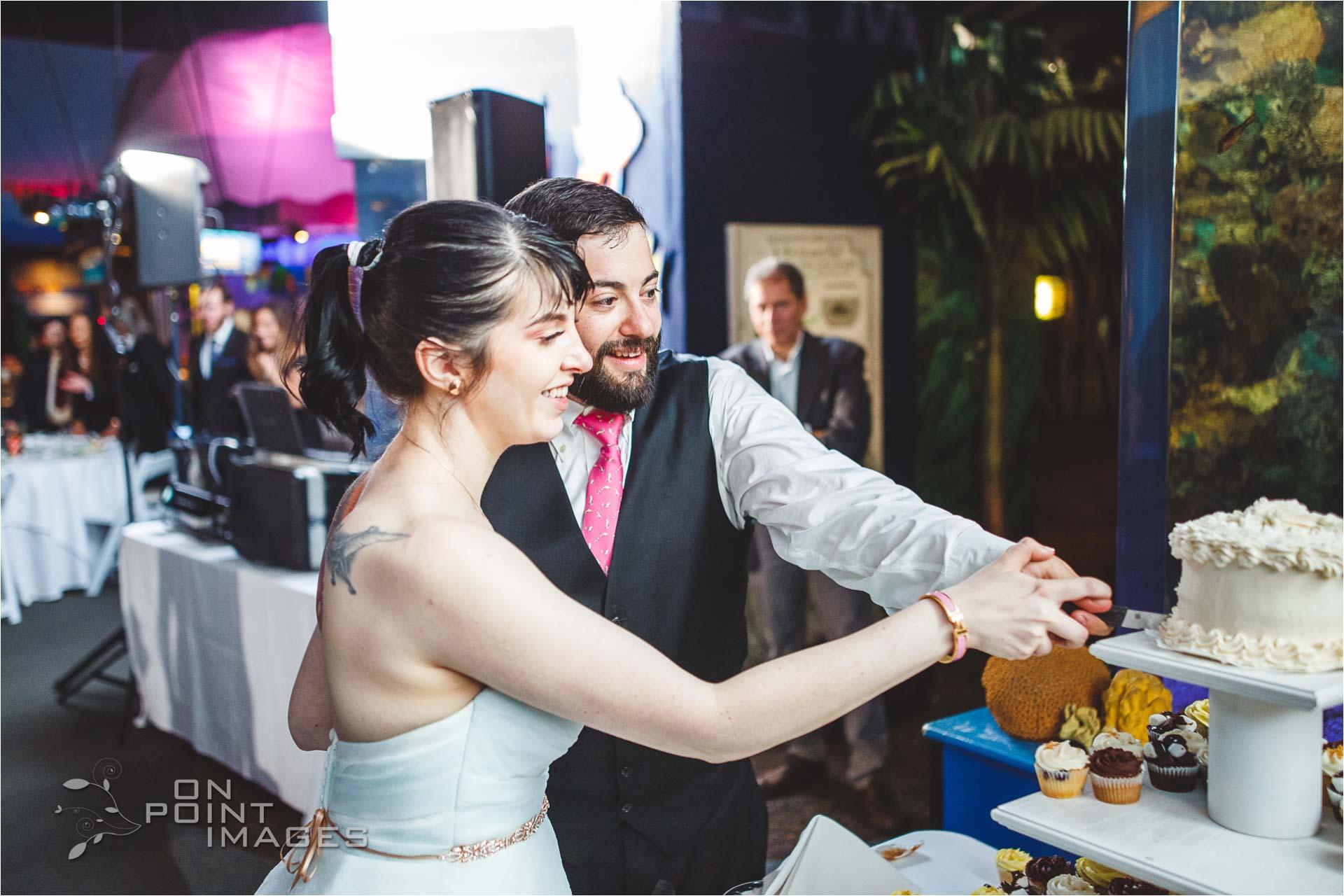 mystic-aquarium-wedding-photographs-39.jpg