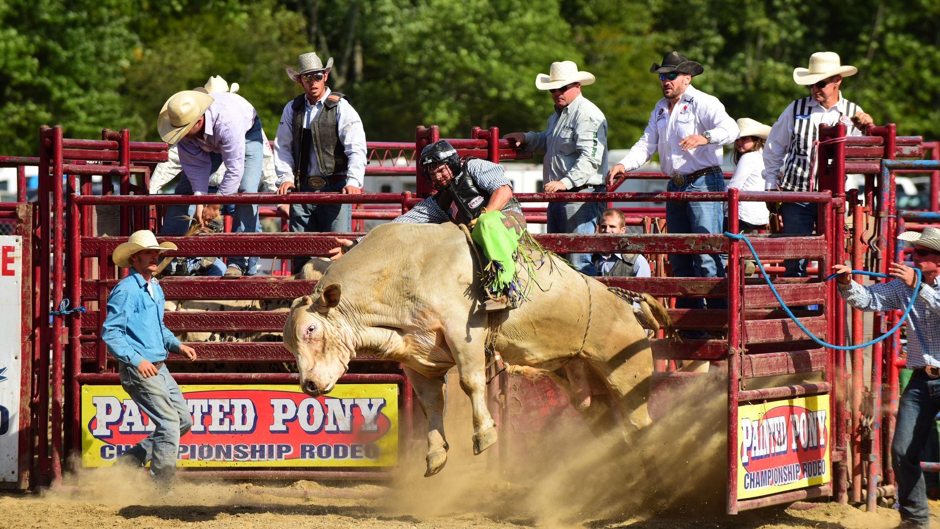 rodeo1.jpeg