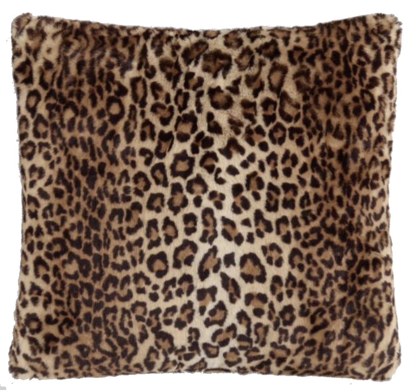 Leopard Print Pillow.png