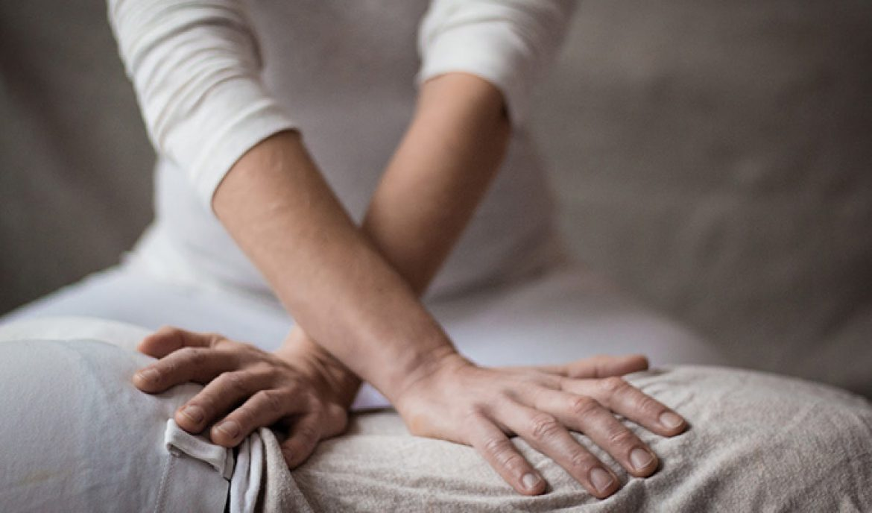 Shitsu massage therapy in Bristol