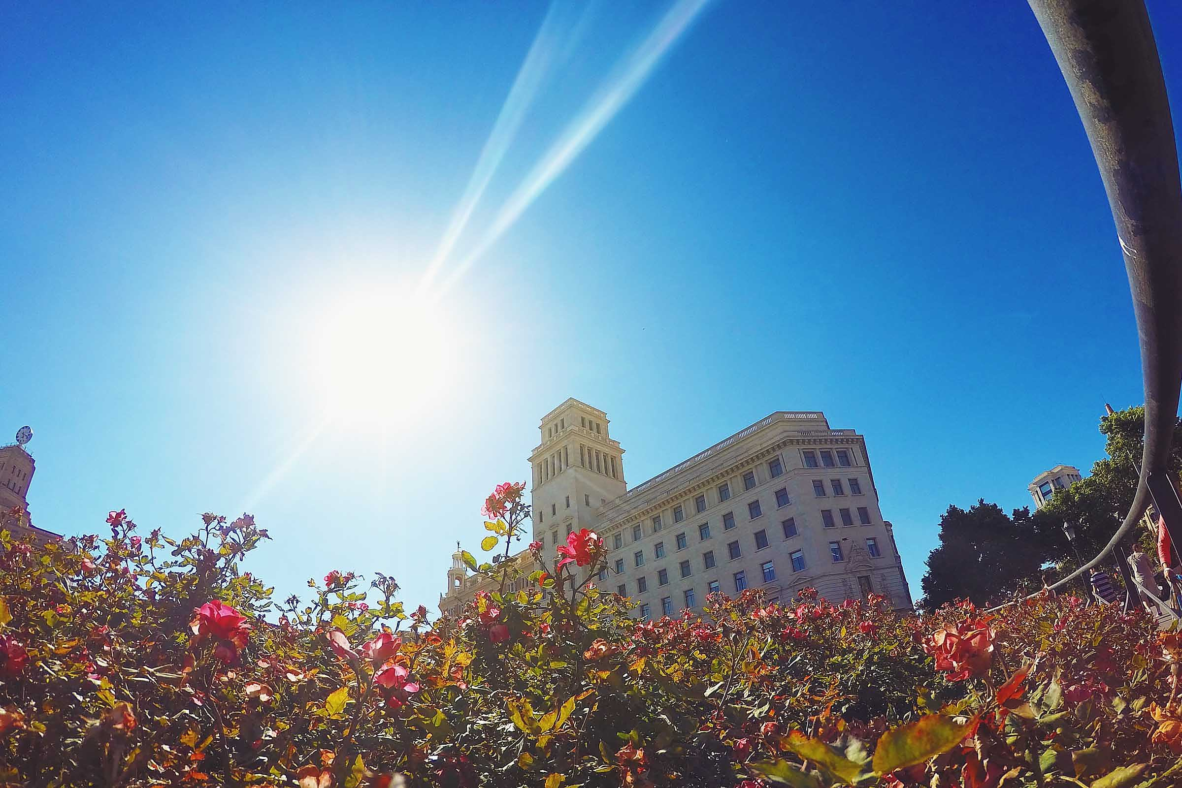 Barcelona-Ibiza-Personal-Travel-13.jpg