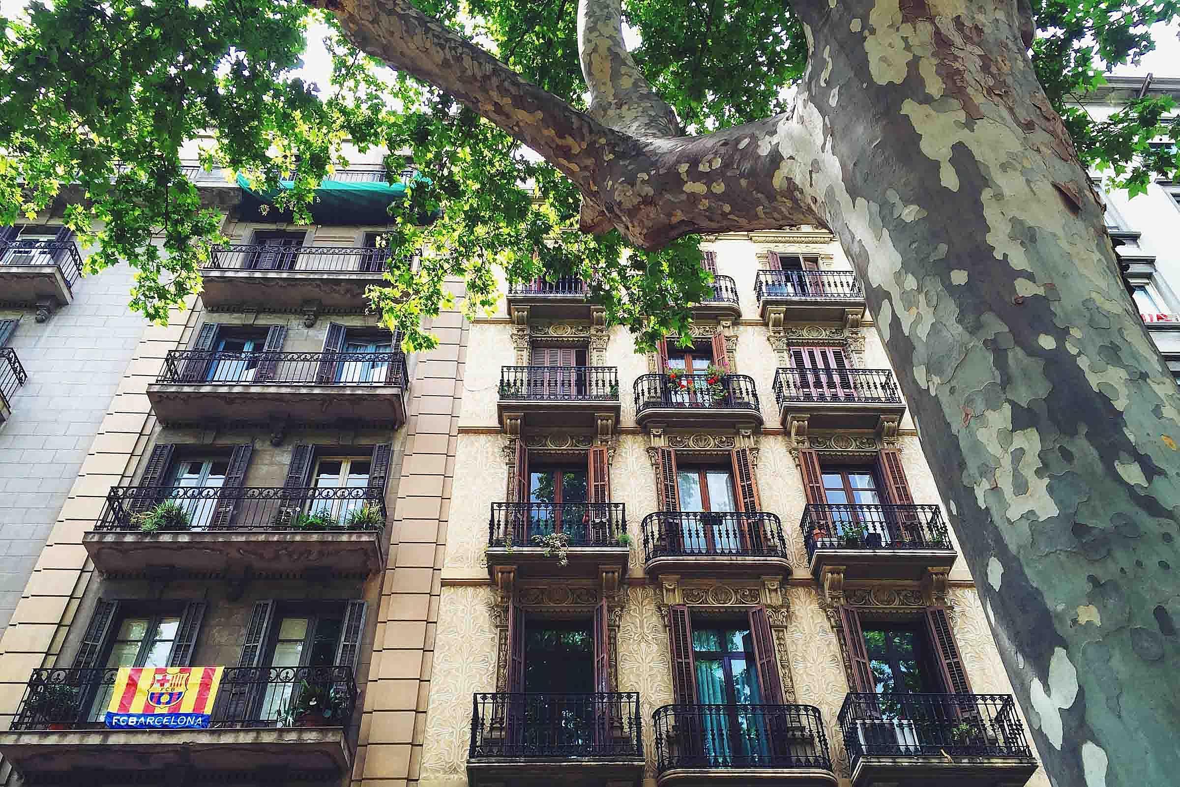 Cataluna Building