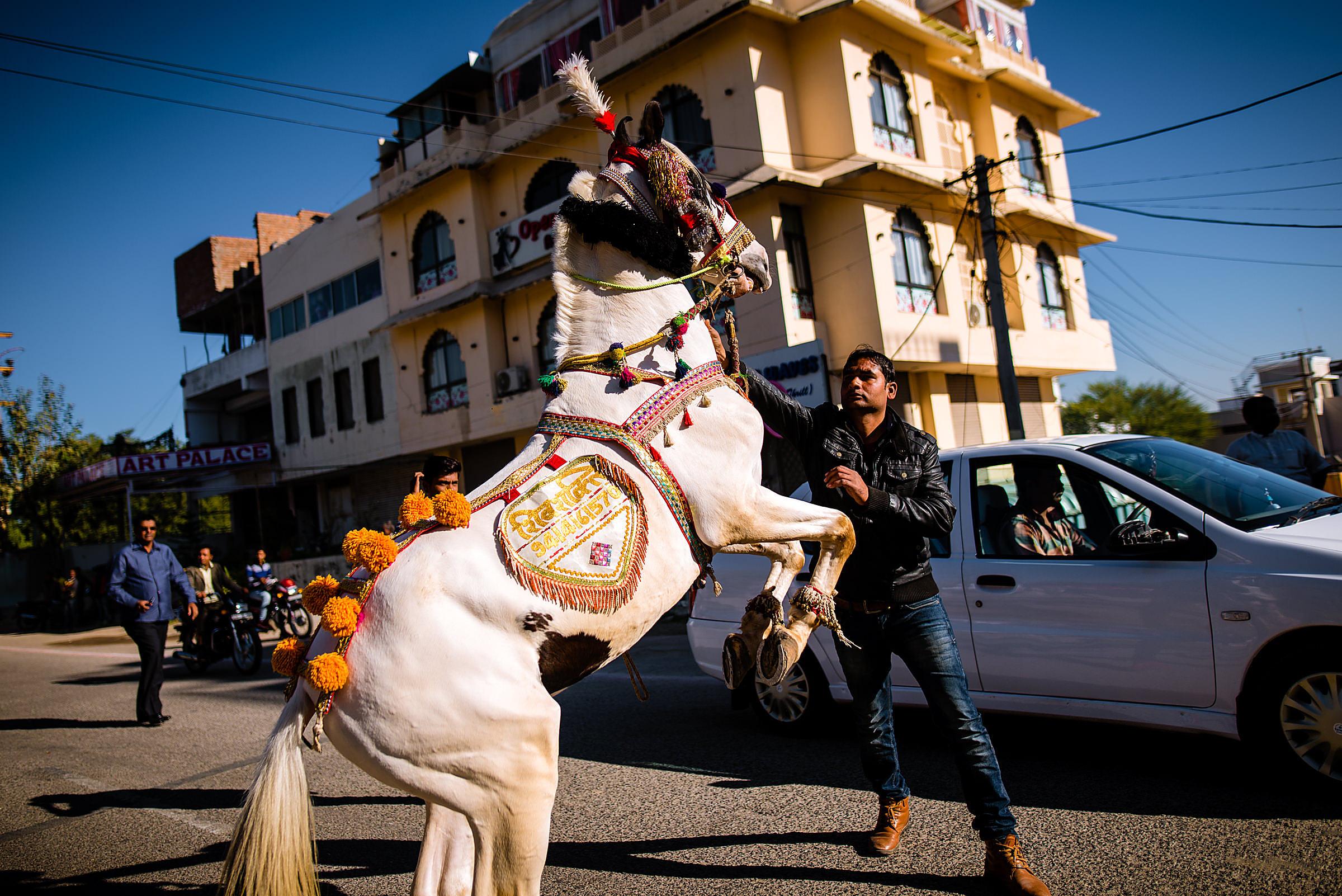 Udaipur-Destination-Wedding-Photographer-1035.jpg