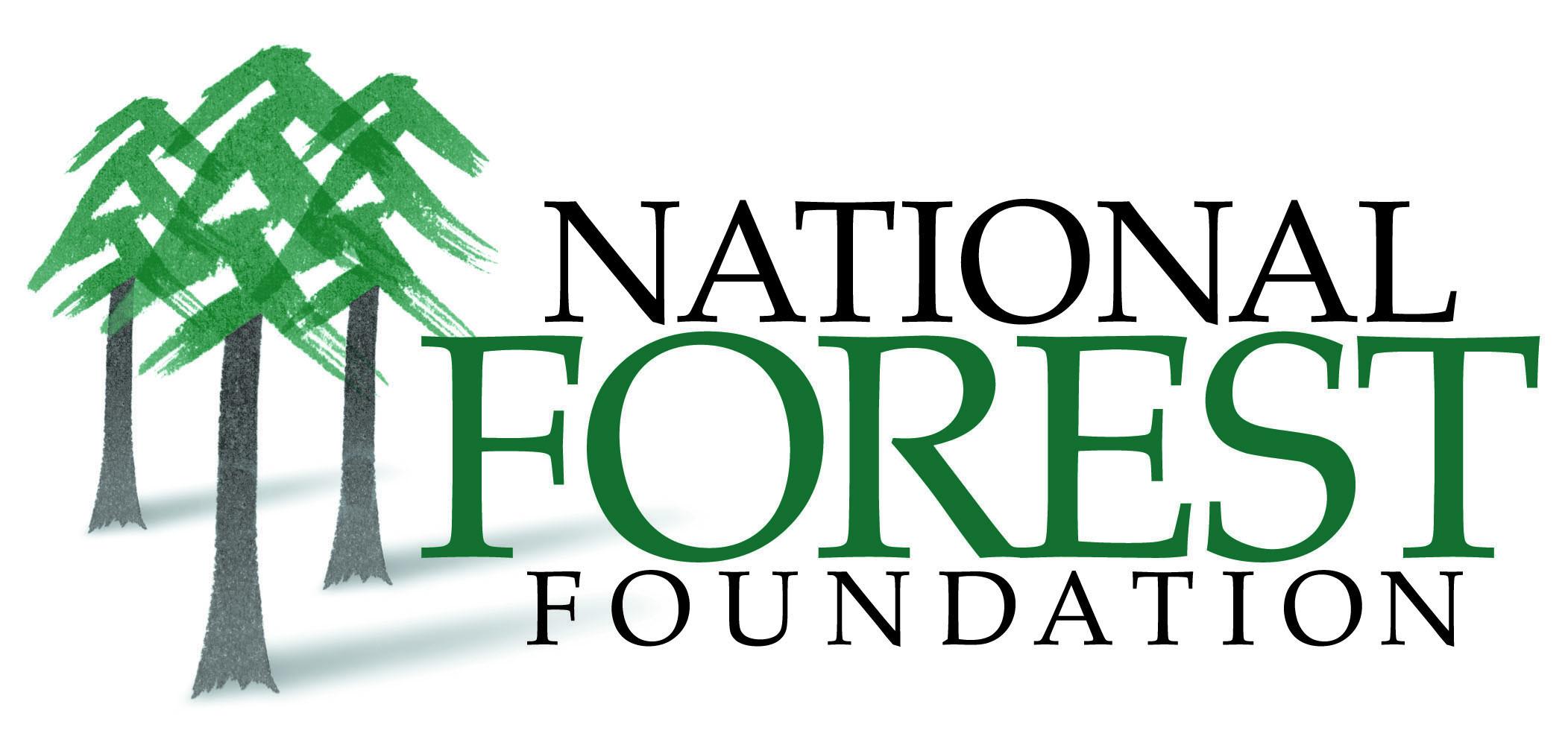 NFF Logo JPG.jpg