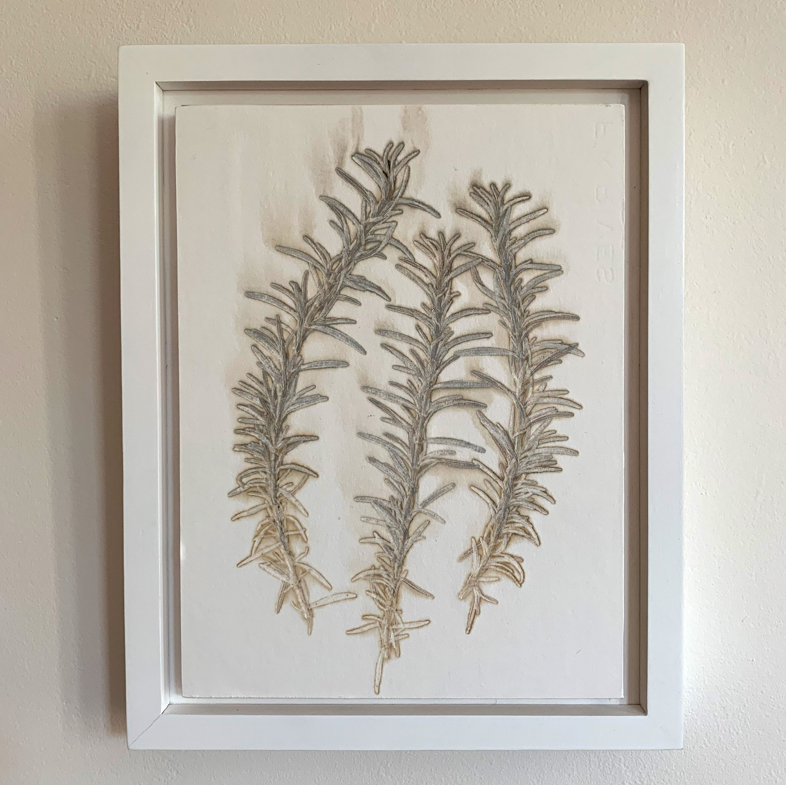 Fresh rosemary was used along with silver inks to create this natural imprint on paper. The print is 9x12 plus frame.