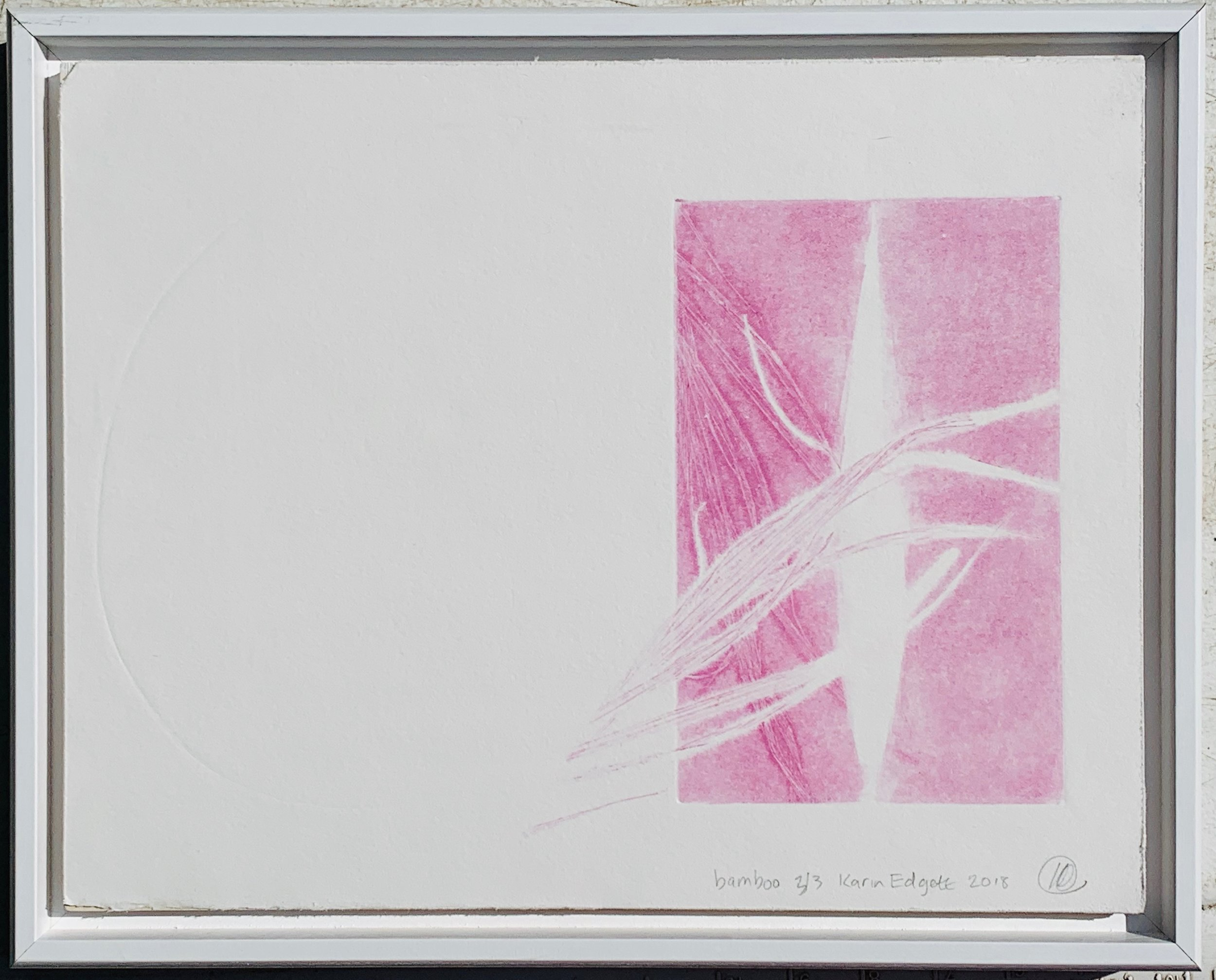 bamboo in pink, Bamboo from my garden was inked and rolled through a printing press with inked plates on BFK Reeves cotton paper. Size is 11x14, It's mounted to a wooden cradle board and framed in white wood.