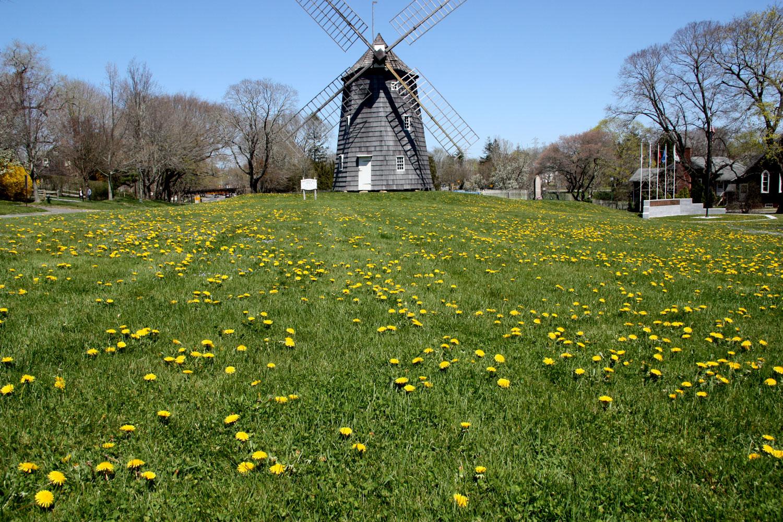 IMG_1778-windmill-web.jpg