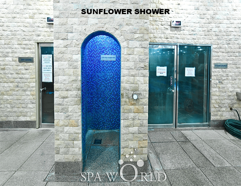 Sauna Sunflower.jpg