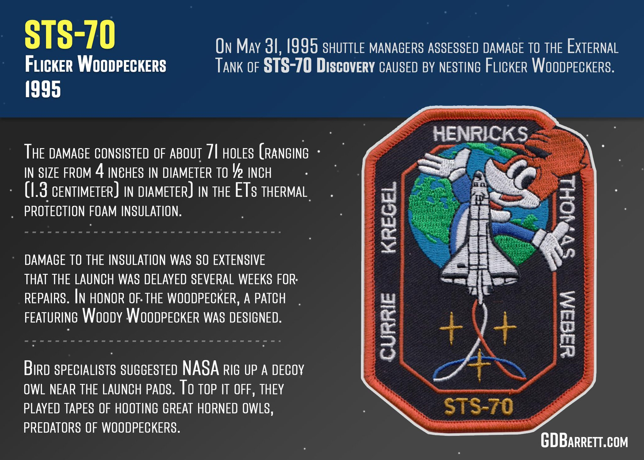 STS-70 Mission Patch - Woodpecker damage