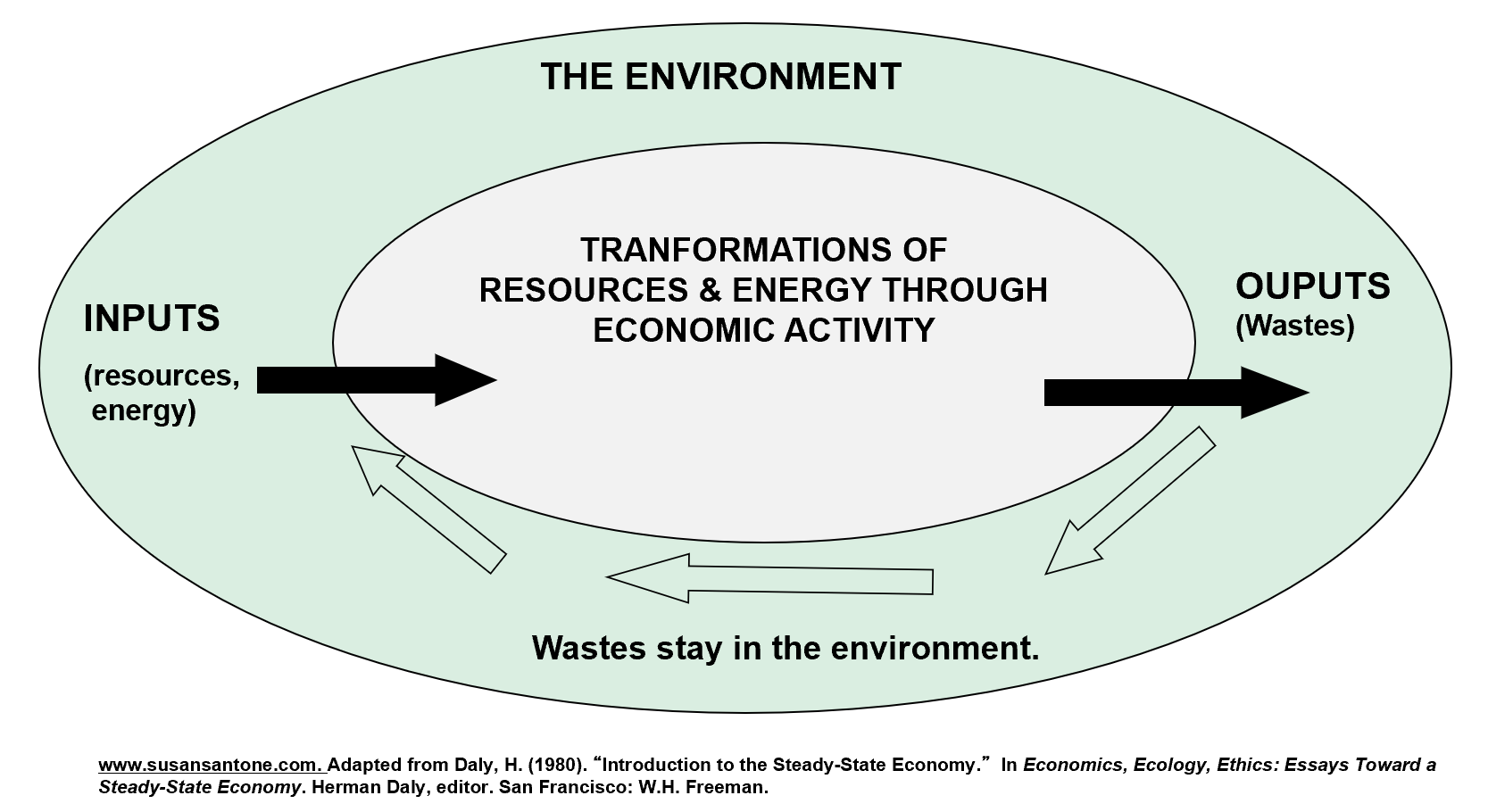 An accurate representation of the economy as a subsystem of the environment.