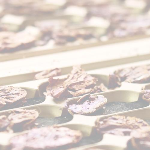Cortadoras de cacao, nuez y almendra -