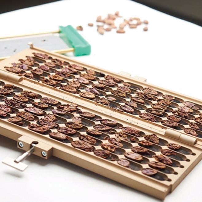 MAGRA 12 - Cortadora de cacao, nuez y almendras.