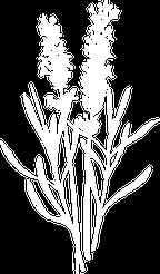 Dr Eryn Logo