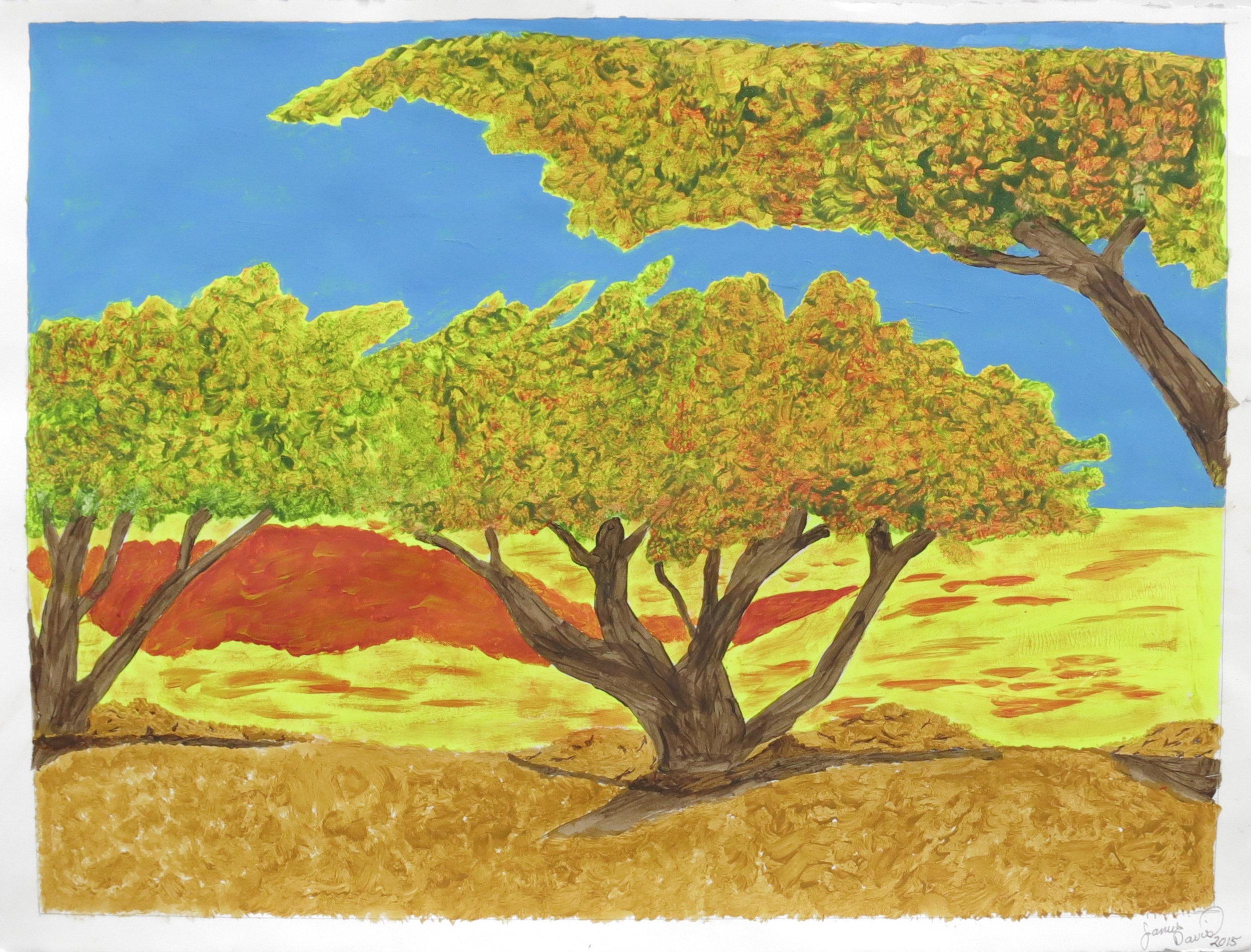 James Davis, Untitled (JDa 018), 2015, Work on paper, 22 x 30 inches