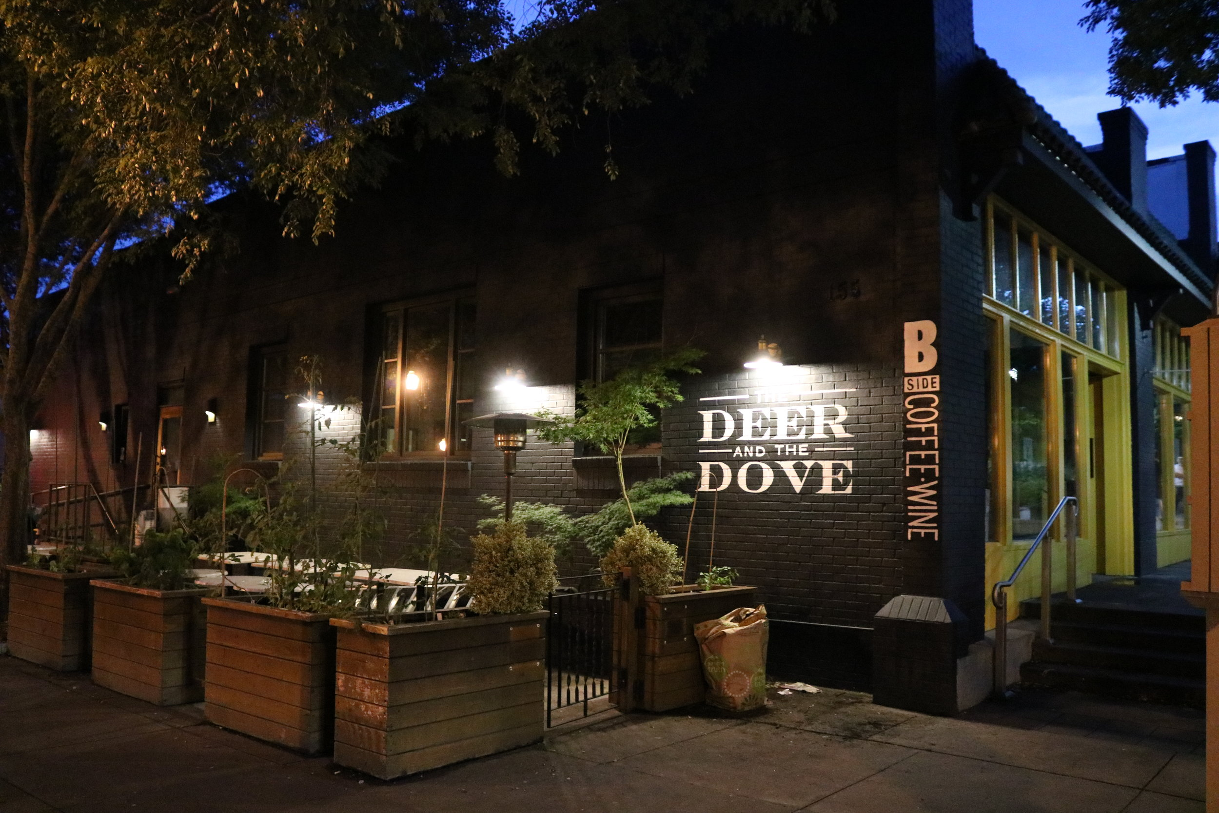 Photo Courtesy of The Deer and the Dove
