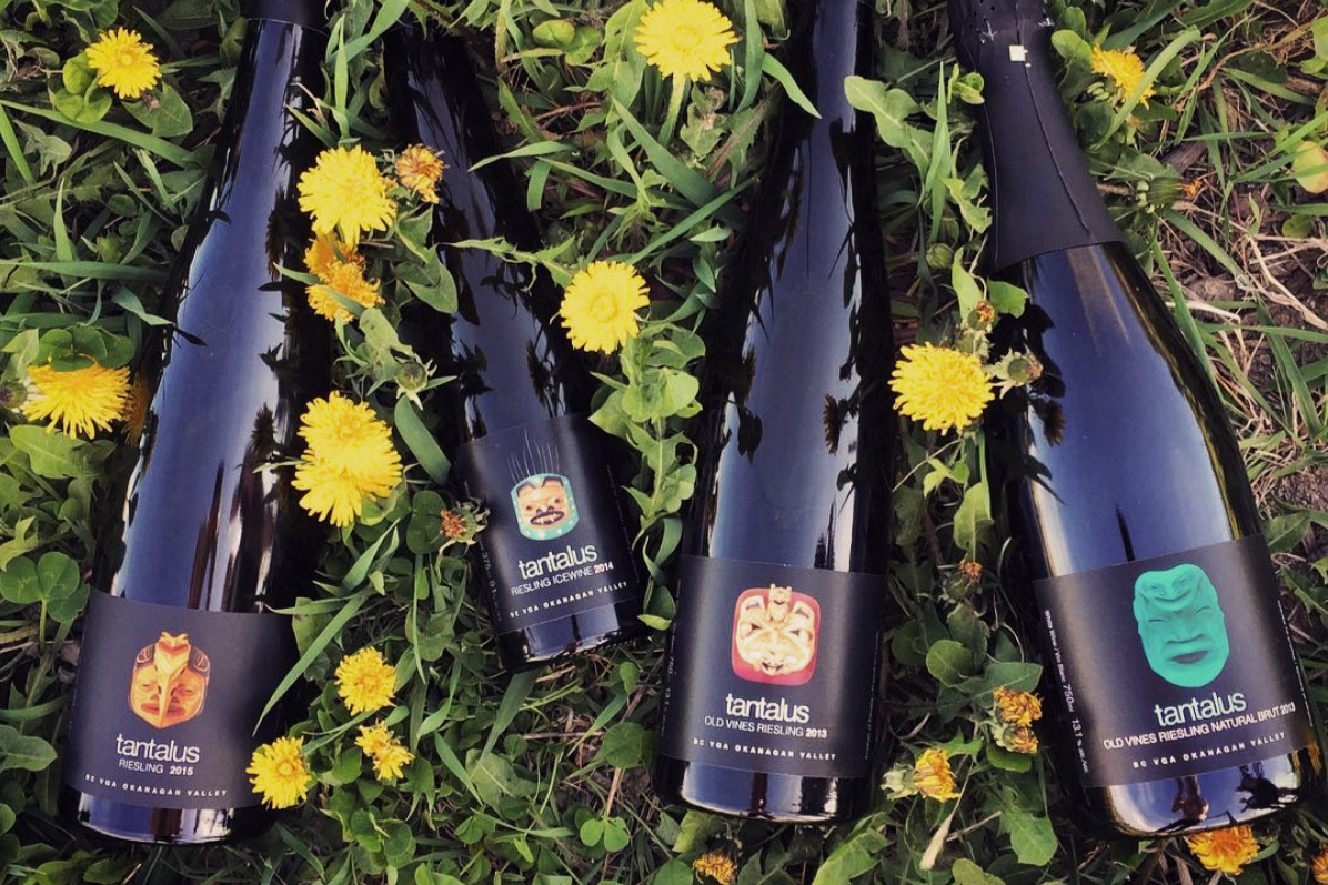 bottles_dandilions.jpg