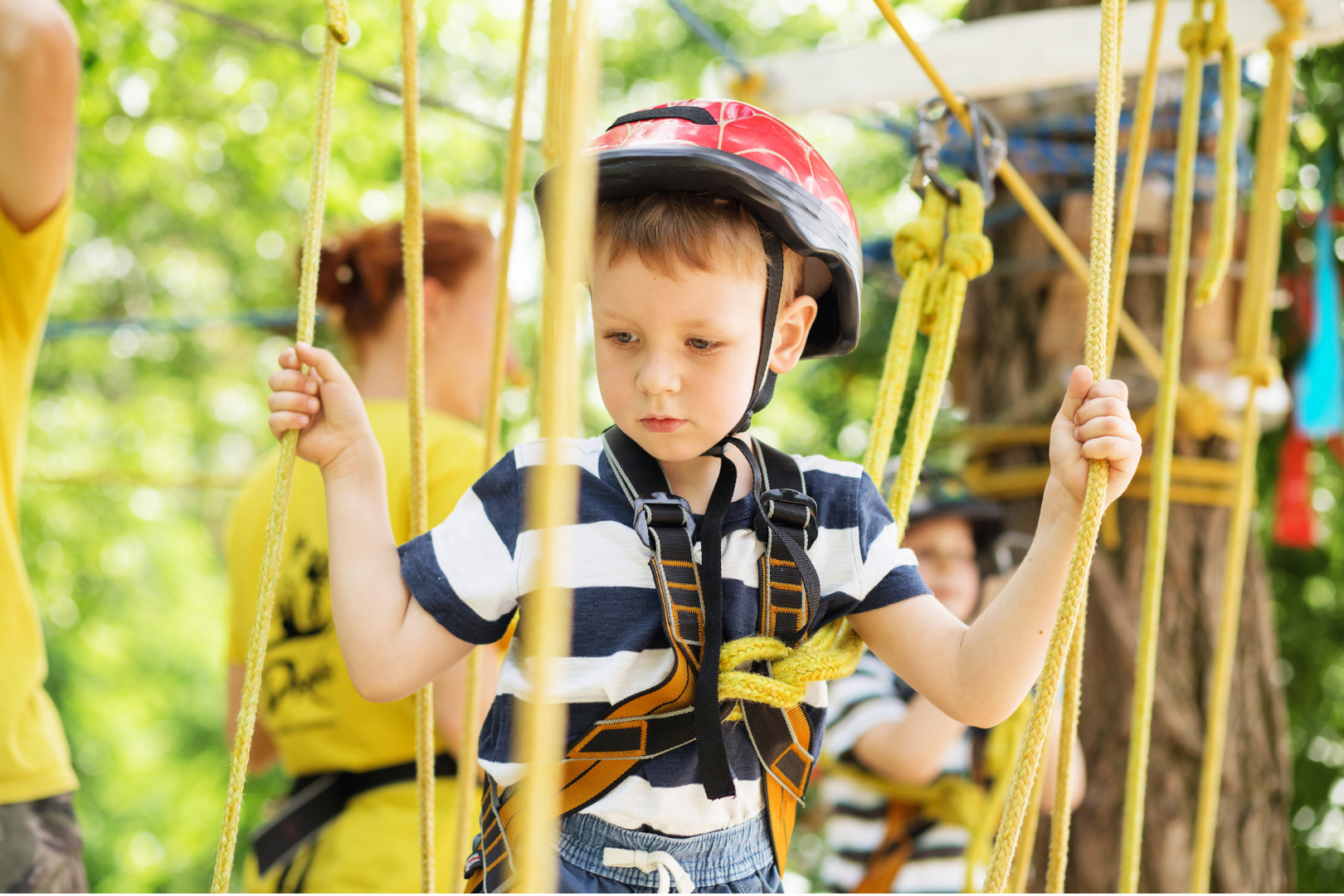 Oyama Zipline - What: Weekly toddler drop-in fun at Oyama ZiplineWhere: Oyama Zipline, LAKE COUNTRYWhen: 10 a.m. every Wednesday all summerCost: $15More: Click here