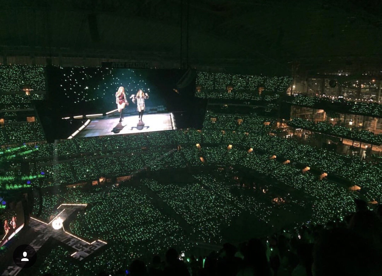Taylor Swift Concert Arena view